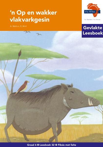 Via Afrika Afrikaans HL G06 Leesboek 32 (PDF)