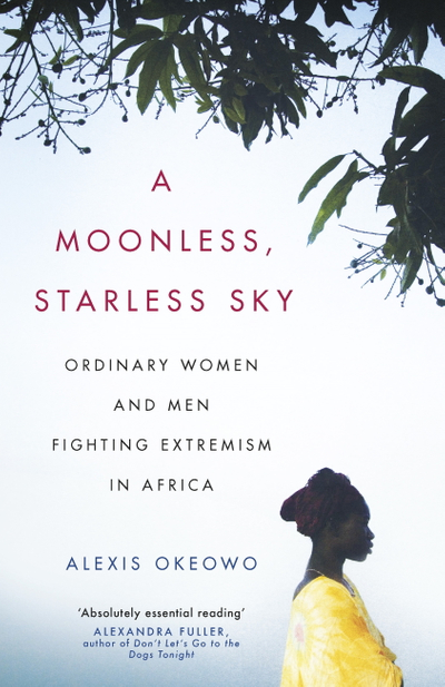 Picture of A Moonless, Starless Sky